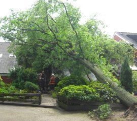 Schweres Gewitter mit Orkanböen und vermutlich Downburst sorgt für hunderte Einsätze in Landkreis Harburg