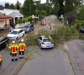 Einsatzzusammenfassung Orkan im Landkreis