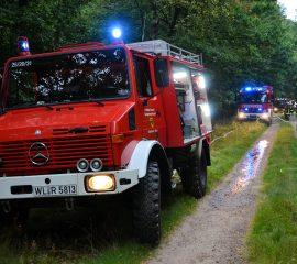 Waldbrandübung in der Wehlener Heide – Fachzug Brandbekämpfung 2 probt den Ernstfall