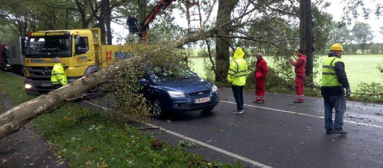 Schwerer Orkan überquert auch den Landkreis Harburg – mehr als 600 Hilfeleistungseinsätze für die Feuerwehren – örtliche Einsatzleitungen installiert – Feuerwehr evakuiert Metronom in Jesteburg