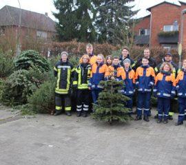 13.01.18 : Jugendfeuerwehren im Landkreis Harburg sammelten wieder fleißig ausgediente Weihnachtsbäume ein
