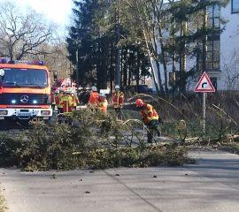 17.03.18 : Sturmböen sorgen für Arbeit – Feuerwehren absolvieren mehr als 20 Hilfeleistungseinsätze wegen Sturm