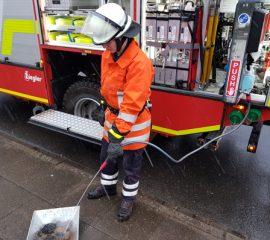 02.04.18 : Entspanntes Osterfest für die Feuerwehren des Landkreises Harburg – Schornstein und Radlader brannten – diversen Gasgerüche wurden festgestellt
