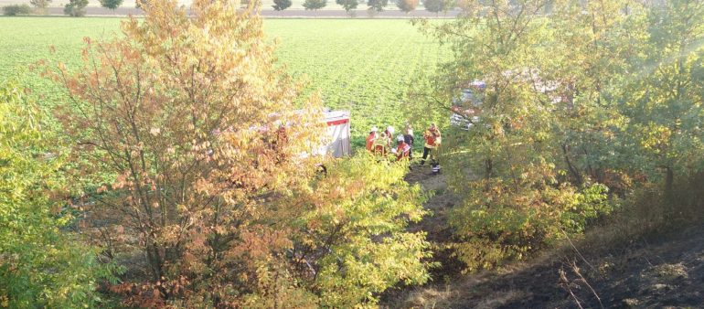 10.10.18 : Mehrere Seevetaler Feuerwehren löschen Bahnböschungsbrand an der Horster Landstraße