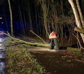 22.12.18 : Nur wenige Hilfeleistungseinsätze durch Sturmböen – Feuerwehren rückten viermal aus, um Windbruch zu beseitigen